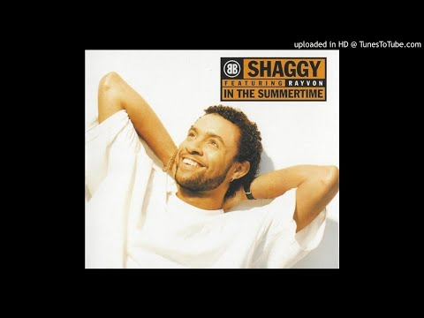 Shaggy featuring rayvon in the summertime