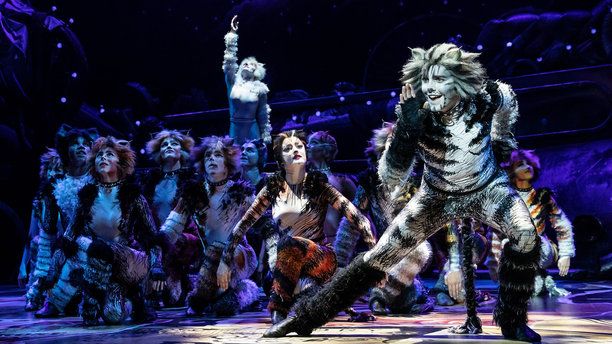 Cats musical tickets new york